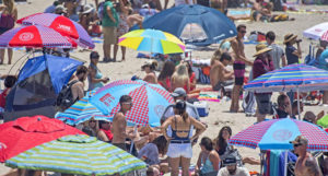 Lifeguards Extend Warnings After Pulling Nearly 200 From Surf Lifeguard News
